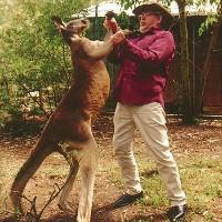 Kangaroo hiếu chiến lao vào đánh nhau với người đàn ông trên đường phố Australia
