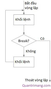 Sơ đồ vòng lặp Python với điều kiện ở giữa