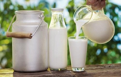 Không nên uống sữa chưa được tiệt trùng.