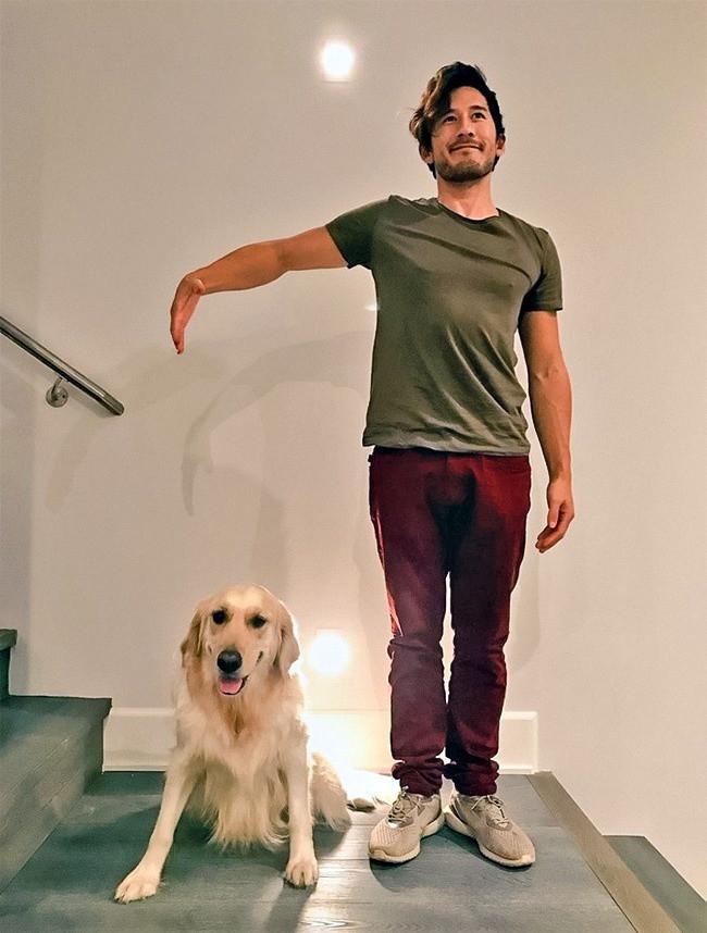 Ảnh chụp chung với thú cưng