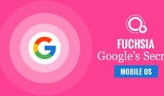 Tất cả những thông tin thú vị về Fuchsia, hệ điều hành mới củaGoogle