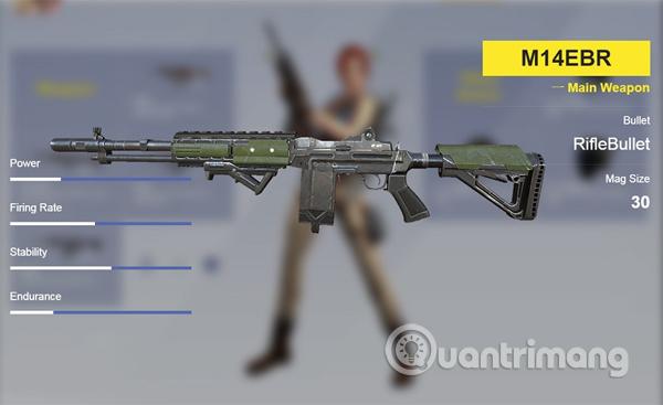 Súng trường M14EBR