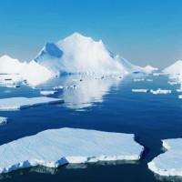 Các nhà khoa học khám phá những gì còn lại của sinh vật lâu đời nhất ở Nam Cực