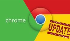 Cách sửa lỗi cập nhật Google Chrome code 7 0x80040905