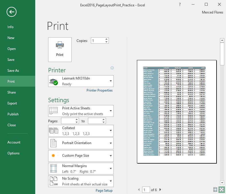 Cửa sổ Print.