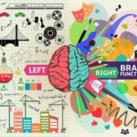 Lập trình tác động đến não bộ của chúng ta như thế nào?