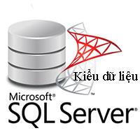 Các kiểu dữ liệu trong SQL Server