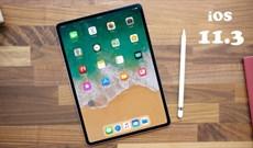 Có nên nâng cấp bản cập nhật iOS 11.3 chính thức cho iPhone, iPad?