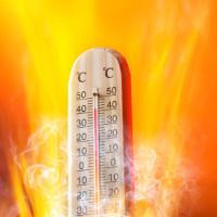 13 thành phố này có thể tăng nhiều hơn 2 độ C vào năm 2020