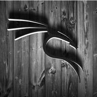 Những điều bạn cần biết về Kali Linux Image