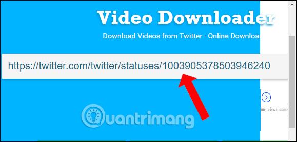 Dán URL video vào DownloadTwitterVideos