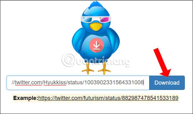 Paste URL video Twitter