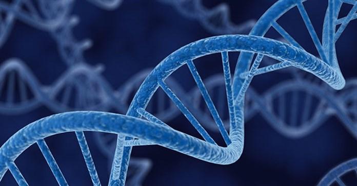 Rò rỉ thông tin DNA còn tệ hơn rò rỉ thông tin thẻ tín dụng nhiều