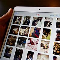 Cách chia sẻ ảnh trên iPhone bằng Family Sharing