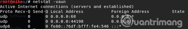 Sử dụng lệnh netstat -vaun