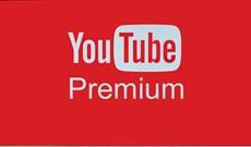 YouTube Premium là gì? Các 'đặc quyền' của tài khoản YouTube Premium