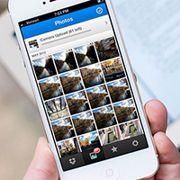 Cách tải ảnh từ Dropbox về iPhone, iPad hoặc Mac