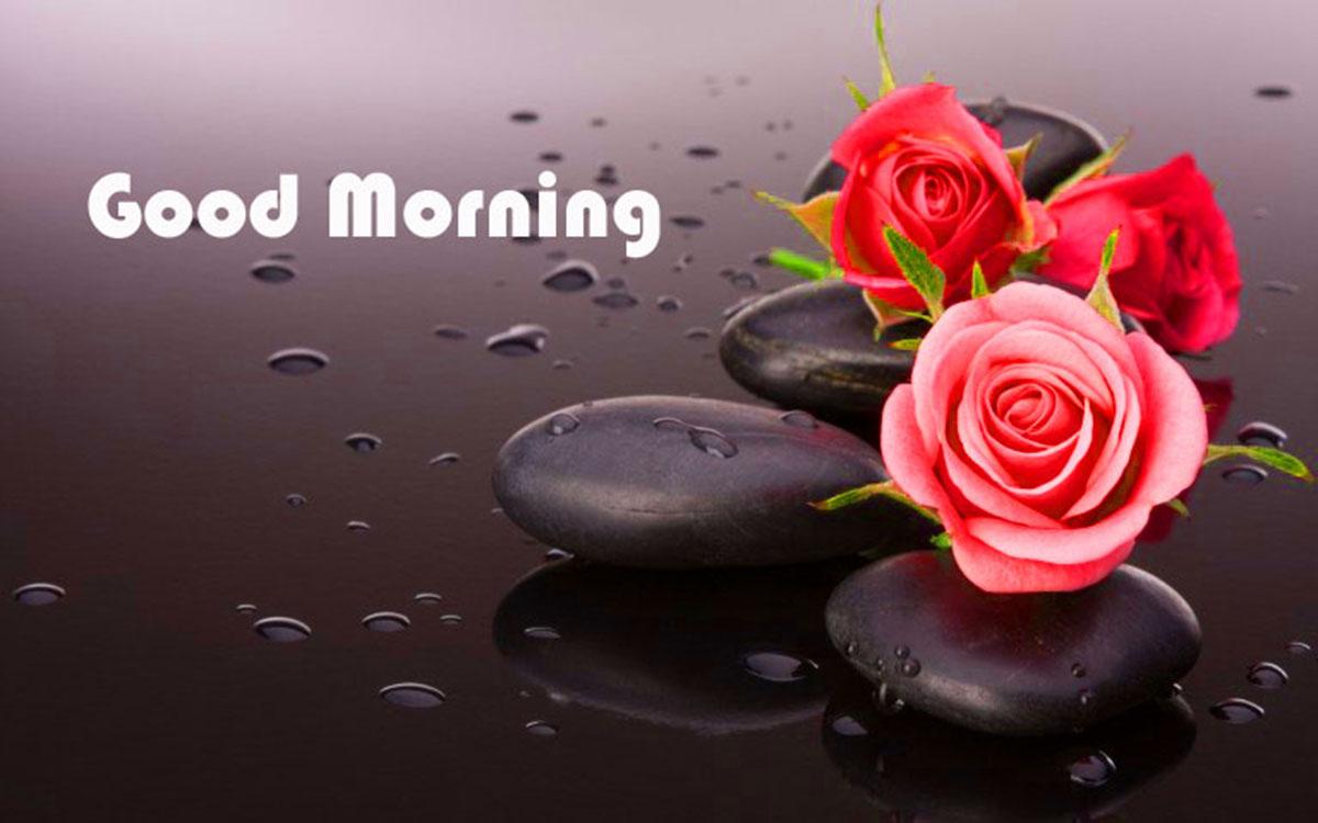 Những ảnh bìa Facebook chào buổi sáng đẹp, ý nghĩa 14
