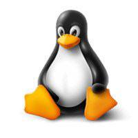 5 cách để làm desktop Linux trông tuyệt vời hơn