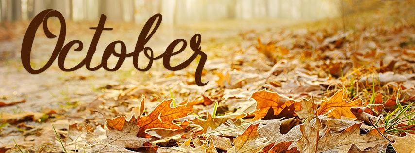 Mời tải về bộảnh bìa Facebook chào tháng 10 đẹp và ý nghĩa - Ảnh minh hoạ 3