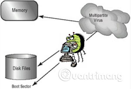 7 virus máy tính bạn nên cẩn trọng - Ảnh minh hoạ 4
