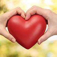 Top những hình ảnh trái tim đẹp nhất