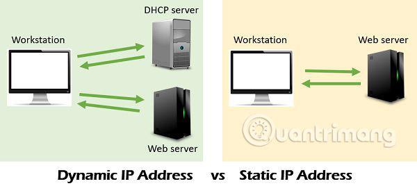 IP tĩnh và động