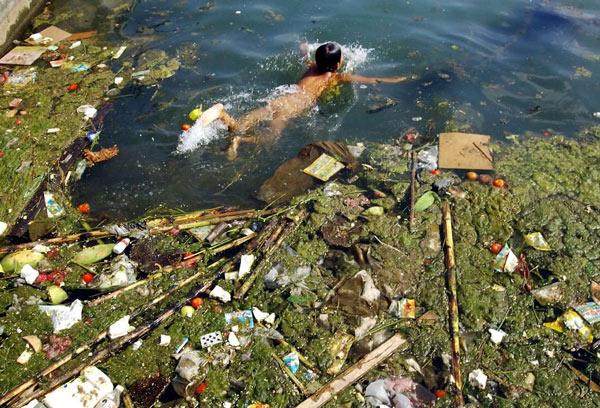 Rác thải nhựa và tác động của nó tới môi trường và động vật hoang dã 11