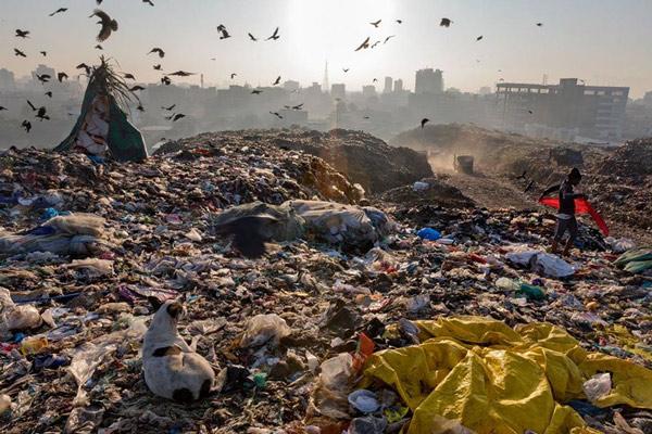 Rác thải nhựa và tác động của nó tới môi trường và động vật hoang dã 56