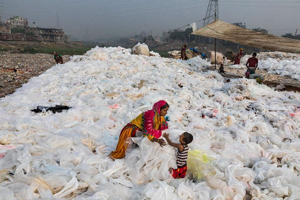 Rác thải nhựa và tác động của nó tới môi trường và động vật hoang dã 57