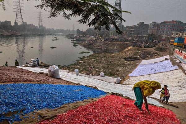 Rác thải nhựa và tác động của nó tới môi trường và động vật hoang dã 58