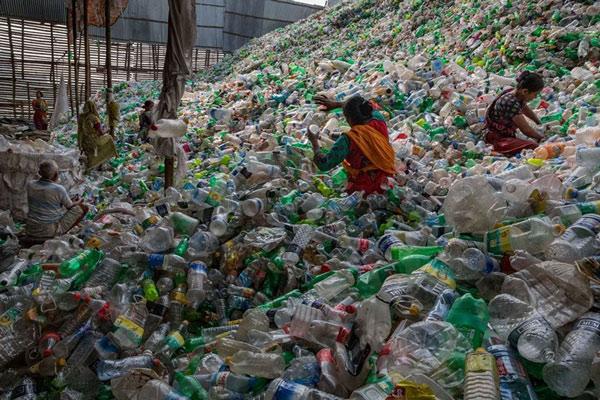 Rác thải nhựa và tác động của nó tới môi trường và động vật hoang dã 60