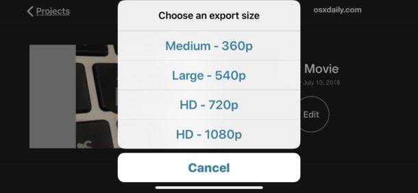 Chọn định dạng video muốn xuất