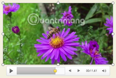 Cách chèn video vào PowerPoint 2016 - Ảnh minh hoạ 16