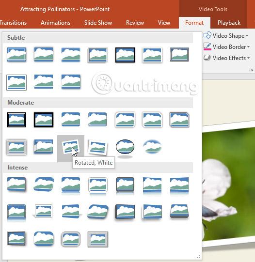 Cách chèn video vào PowerPoint 2016 - Ảnh minh hoạ 21