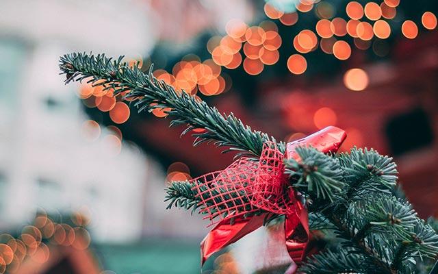 Ảnh Giáng Sinh 4