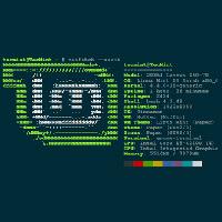 Tạo màn hình thông tin hệ thống đầy màu sắc theo phong cách Ascii Art với Neofetcg