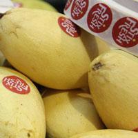 Stixfresh, loại nhãn dán đặc biệt giúp trái cây giữ được lâu hơn14 ngày, mọng nước và không bị mốc
