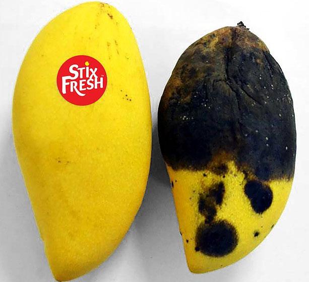 Loại nhãn dán đặc biệt này thậm chí còn giúp trái cây ngọt,mọng nước và không bị mềm