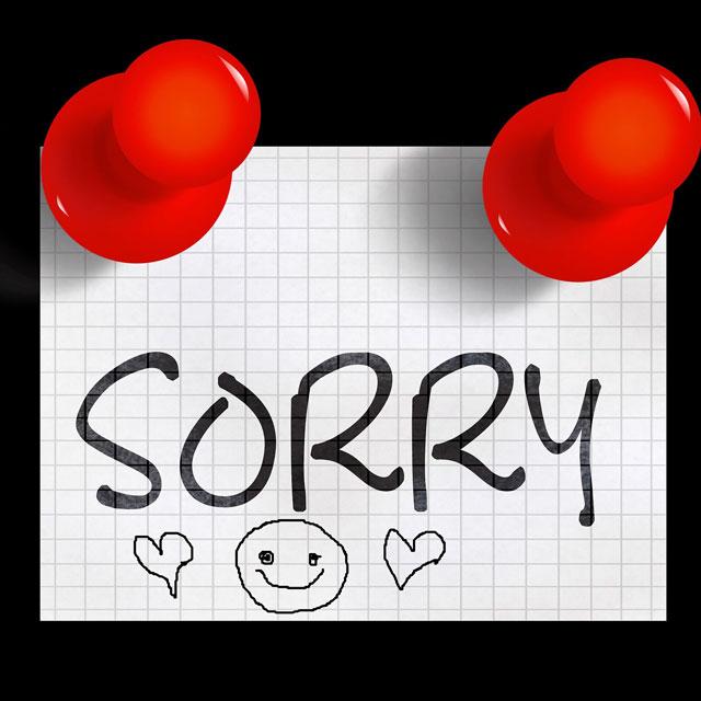 Ảnh xin lỗi Pixabay 2
