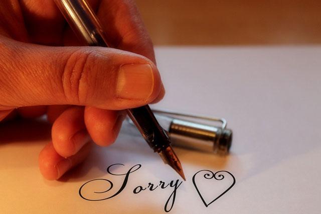 Ảnh xin lỗi Pixabay 7