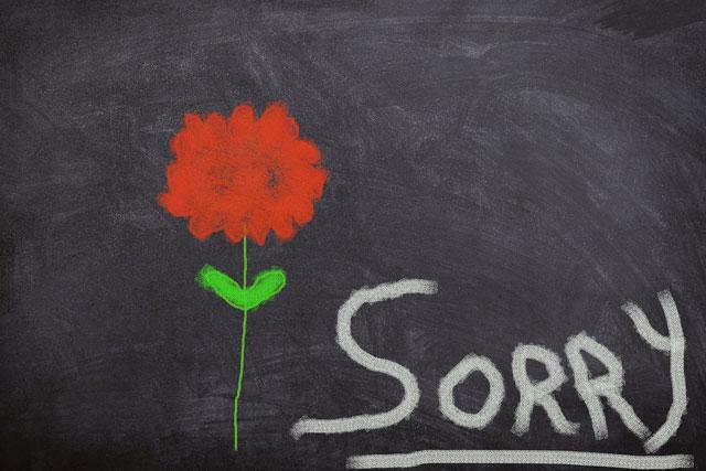 Ảnh xin lỗi Pixabay 9