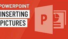 Cách chèn ảnh vào Powerpoint 2016