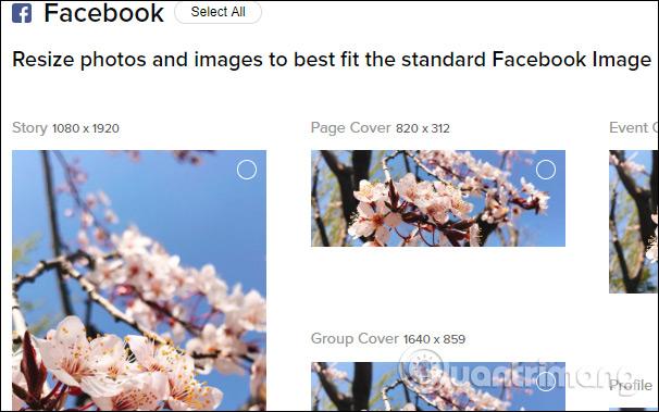 Cover ảnh bìa mạng xã hội