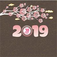 Ảnh bìa Facebook chào xuân Kỷ Hợi 2019