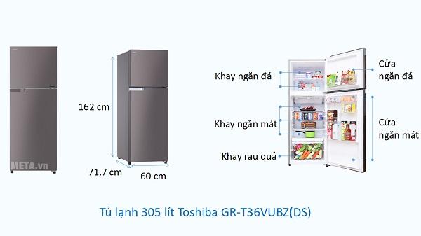 Kích thước Tủ lạnh 305 lít Toshiba GR-T36VUBZ(DS)