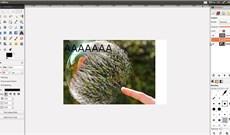 Cách thêm văn bản bằng GIMP