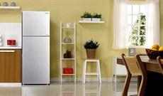 Chọn dung tích tủ lạnh sao cho phù hợp với số thành viên trong gia đình