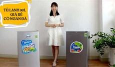 Tủ lạnh 90 lít nào giá rẻ có ngăn đá?