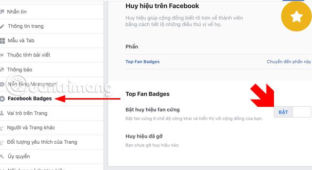 Cách kích hoạt huy hiệu Fan Cứng cho Fanpage Facebook - Ảnh minh hoạ 5